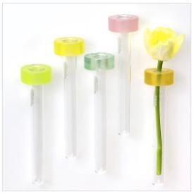 magnet vases